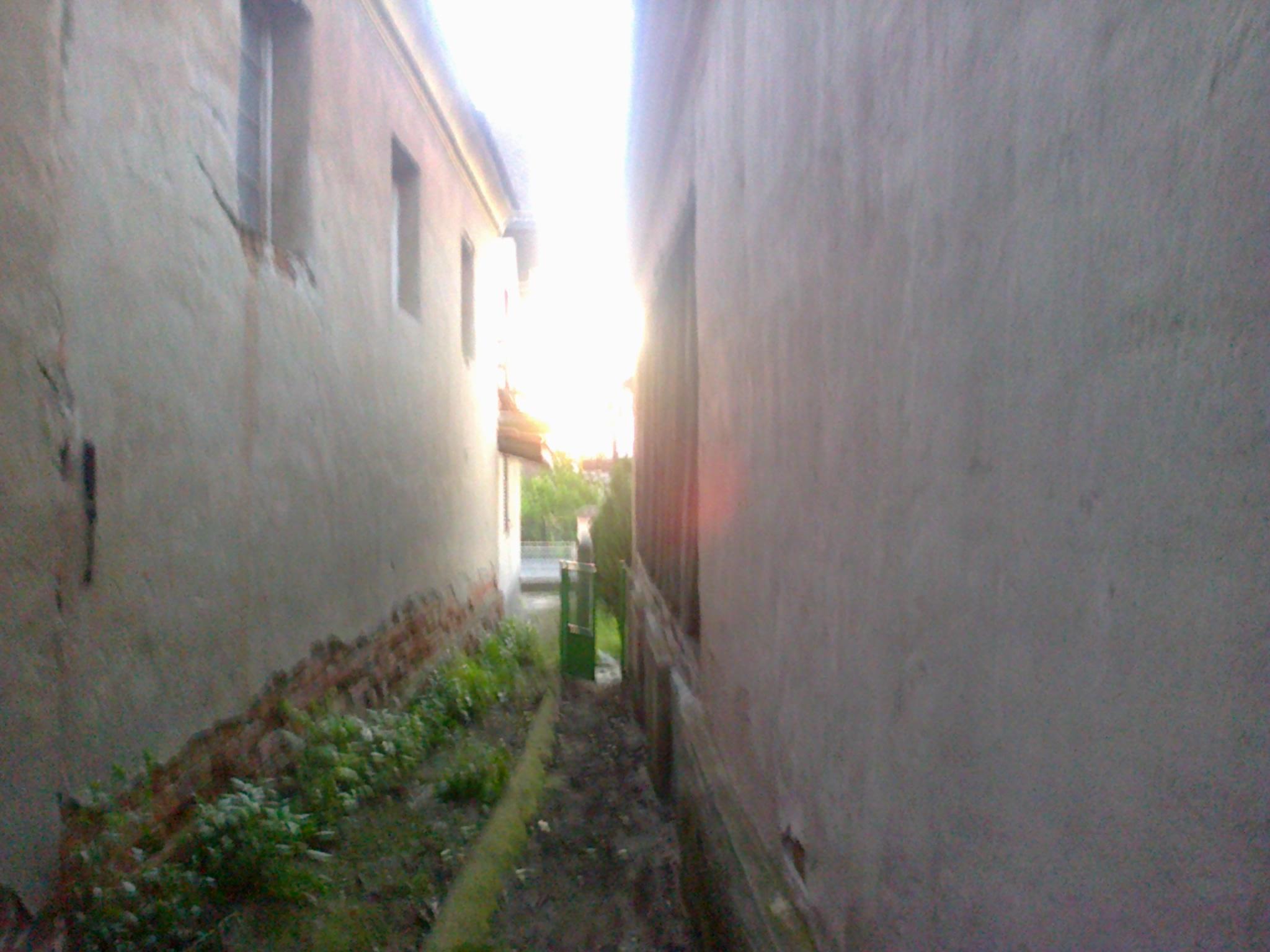 Између зидова и малтера кућа, и година, деценија (Звижд, Мишљеновац, мај 2014)